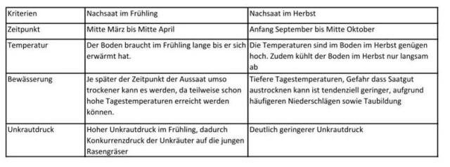 Rasennachsaat Tabelle