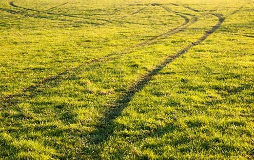 Radspuren im Rasen