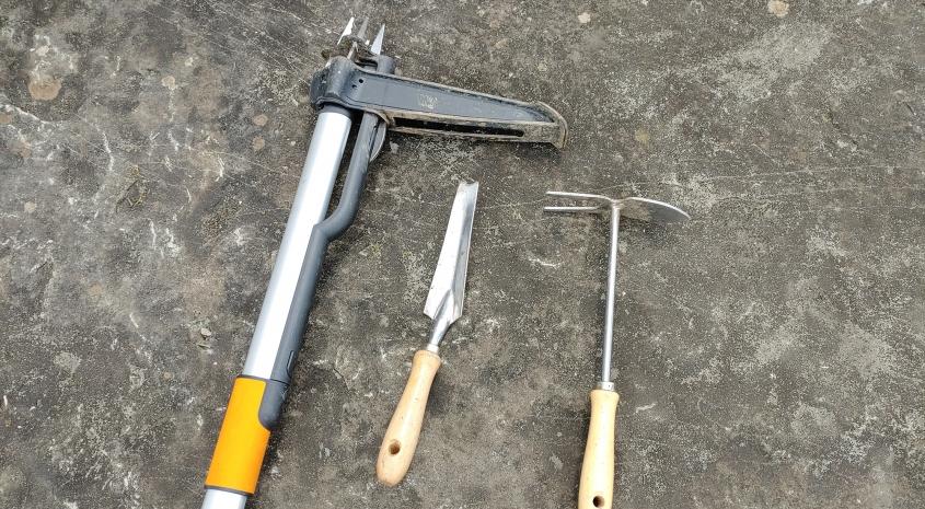 Werkzeuge zum Entfernen von Löwenzahn-Pflanzen